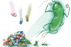 dijital hemsire antimikrobiyal direnc
