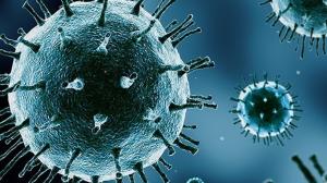 enfeksiyon hastaligi